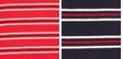Raven Stripe- Scarlet/sky Captain