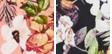 Or Regal Bloss