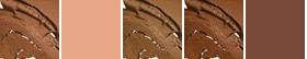 NW45 (medium mahogany/red undertone)