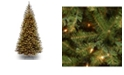 National Tree Company National Tree 7' Spruce With Clear Lights