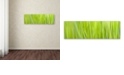 "Trademark Global Cora Niele 'Green Grass Scape' Canvas Art, 6"" x 19"""
