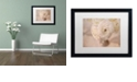 "Trademark Global Cora Niele 'White Persian Buttercup Still Life' Matted Framed Art, 16"" x 20"""