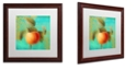 """Trademark Global Color Bakery 'Glowing Fruits Iii' Matted Framed Art, 16"""" x 16"""""""