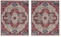Safavieh Nirvana Creme and Red 9' x 13' Area Rug