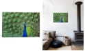 """iCanvas Peacock Feathers Gallery-Wrapped Canvas Print - 26"""" x 40"""" x 0.75"""""""