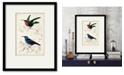 "Courtside Market D'Orbigny Birds II 16"" x 20"" Framed and Matted Art"