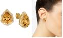 Le Vian Cinnamon Citrine (6 ct. t.w.) & Nude Diamonds (1/4 ct. t.w.) Stud Earrings in 14k Gold
