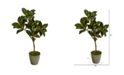 "Nearly Natural 41"" Magnolia Leaf Artificial Tree in Olive Green Planter"