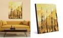 "Creative Gallery Jangwa in Raw Umber Light Abstract 16"" x 20"" Acrylic Wall Art Print"