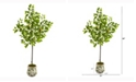 Nearly Natural 5ft. Lemon Artificial Tree in Floral Planter