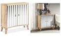 Furniture Ashton 2-Door Cabinet, Quick Ship