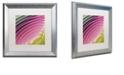 "Trademark Global Color Bakery 'Satin Ii' Matted Framed Art, 16"" x 16"""