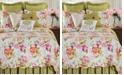 C&F Home Clara Full Queen 3 Piece Quilt