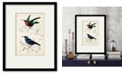 "Courtside Market D'Orbigny Birds I 16"" x 20"" Framed and Matted Art"
