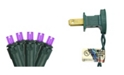 Northlight Set of 50 Purple LED Wide Angle Christmas Lights - Green Wire