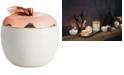 Illume CLOSEOUT! Harvest Cider Woods Ceramic Candle