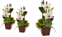 Nearly Natural White Cattleya Orchid and Succulent Artificial Arrangement, Set of 2