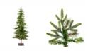 Vickerman 7' Shawnee Fir Artificial Christmas Tree with 350 Warm White LED Lights