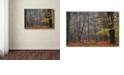 "Trademark Global Cora Niele 'Hazy Wood' Canvas Art, 22"" x 32"""