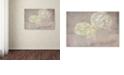 "Trademark Global Cora Niele 'White Hortensia Still Life' Canvas Art, 30"" x 47"""