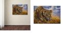 "Trademark Global Jenny Newland 'Playful Curiosity' Canvas Art, 30"" x 47"""