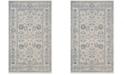 Safavieh Patina Light Gray and Ivory 3' x 5' Area Rug