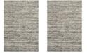 Safavieh Retro Ivory and Gray 3' x 5' Area Rug