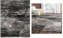 Safavieh Adirondack Silver and Black 8' x 10' Area Rug