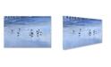 "Trademark Global Robert K Jones 'Coast 1' Canvas Art - 47"" x 30"" x 2"""
