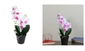 Northlight Potted Phalaenopsis Orchid Artificial Silk Flower Arrangement