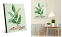 Creative Gallery Watercolor Bay Leaves on Green Acrylic Wall Art Print Collection