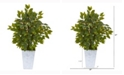Nearly Natural 17in. Mini Ficus Artificial Tree in Embossed White Planter