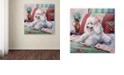 "Trademark Global Jenny Newland 'White Poodle' Canvas Art, 14"" x 14"""