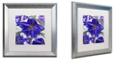 "Trademark Global Color Bakery 'Delphine I' Matted Framed Art, 16"" x 16"""