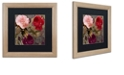 """Trademark Global Color Bakery 'Birds And Roses' Matted Framed Art, 16"""" x 16"""""""