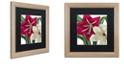 "Trademark Global Color Bakery 'Christmas Amaryllis I' Matted Framed Art, 16"" x 16"""
