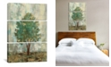 "iCanvas Verdi Trees Ii by Silvia Vassileva Gallery-Wrapped Canvas Print - 60"" x 40"" x 1.5"""