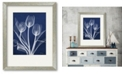 """Courtside Market Tulip Blueprint X-Ray 16"""" x 20"""" Framed and Matted Art"""
