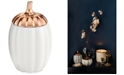 Illume CLOSEOUT! Harvest Rustic Pumpkin Ceramic Candle