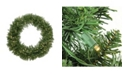 """Northlight 24"""" Pre-Lit Northern Pine Artificial Christmas Wreath - Warm Clear LED Lights"""