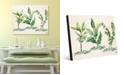 "Creative Gallery Herb Trio in Green on Tan 16"" x 20"" Acrylic Wall Art Print"
