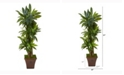 Nearly Natural 57in. Corn Stalk Dracaena Artificial Plant in Brown Planter Real Touch