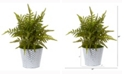 Nearly Natural 14in. Fern Artificial Plant in Embossed White Tin Planter