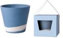 "Wedgwood Burlington Blue & White Pot 5"""
