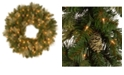 "National Tree Company 24"" Carolina Pine Wreath with 50 Battery Operated LED Lights"