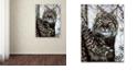 "Trademark Global Jenny Newland 'Alluring Eyes' Canvas Art, 18"" x 24"""
