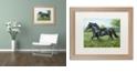 "Trademark Global Jenny Newland 'Free Spirit' Matted Framed Art, 16"" x 20"""