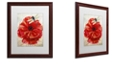 "Trademark Global Color Bakery 'Le Pavot Dragonfly' Matted Framed Art, 16"" x 20"""