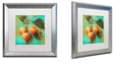 """Trademark Global Color Bakery 'Glowing Fruits Ii' Matted Framed Art, 16"""" x 16"""""""