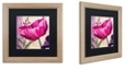 "Trademark Global Color Bakery ' Pink Poppy I ' Matted Framed Art, 16"" x 16"""